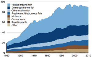 review of the state of world marine fisheries resources