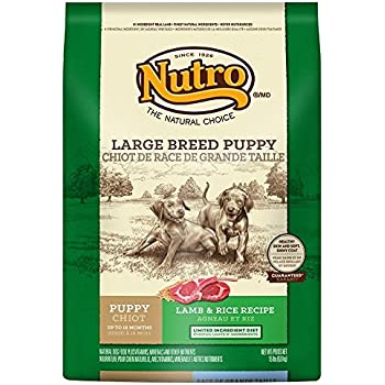 nutro lamb and rice puppy reviews
