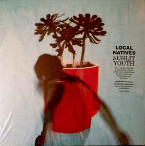 local natives sunlit youth review