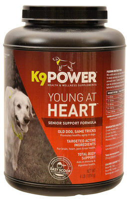 young at heart for dogs reviews